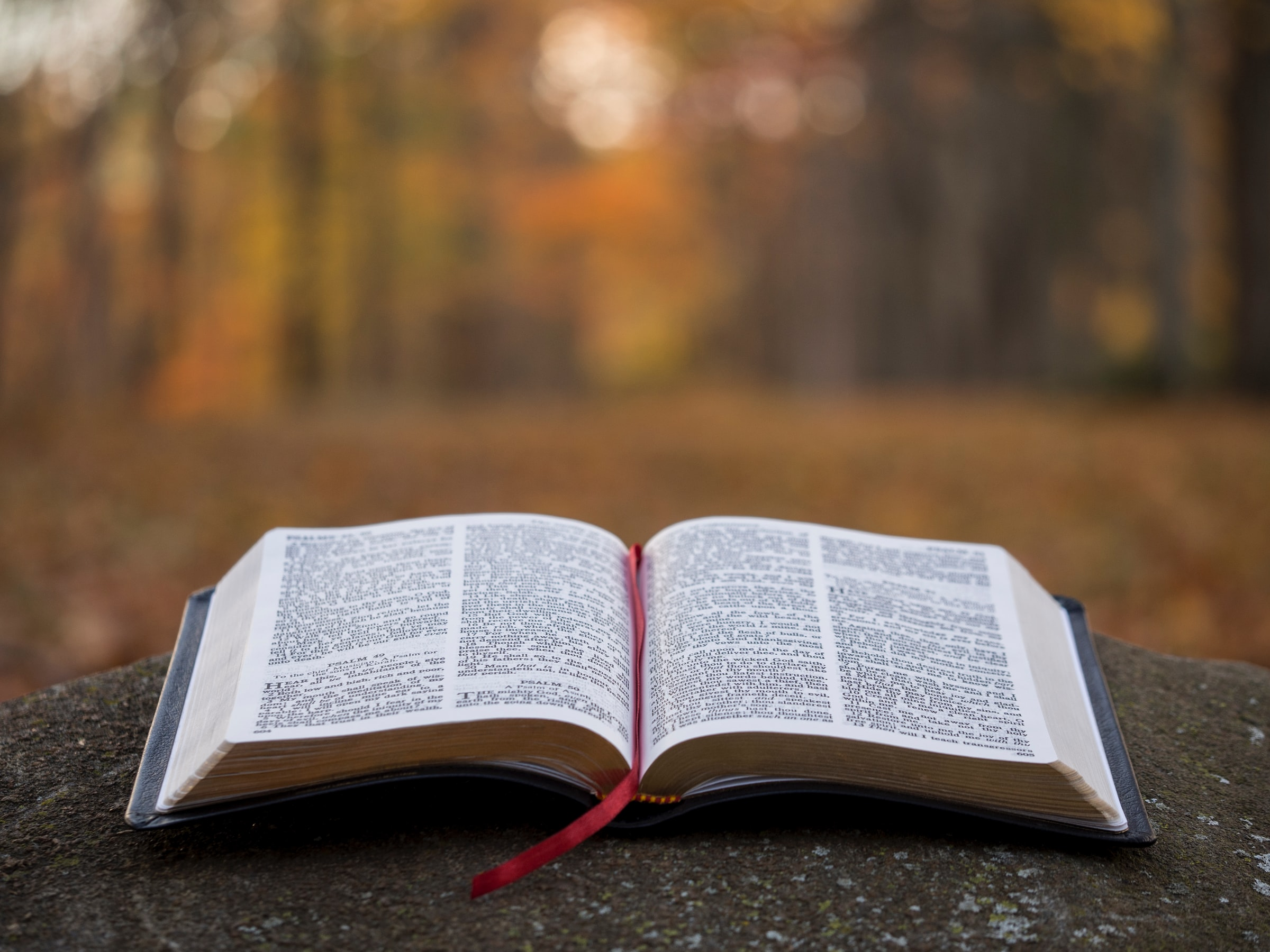 Overview Of The Book Of Revelations – New Testament